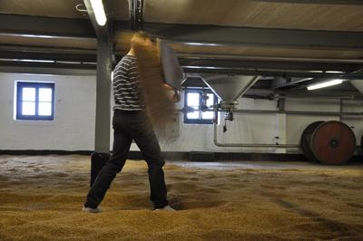 barleydance-webb1